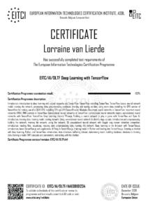 EITC-AI-DLTF-AAE08101234-Suppl