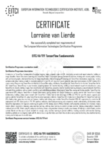 EITC-AI-TFF-AAE08101234-Suppl